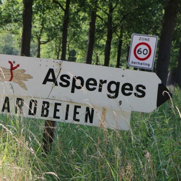 Gerwen bord asperges